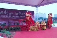 奉贤南桥新城住宅和商业项目集中开工仪式